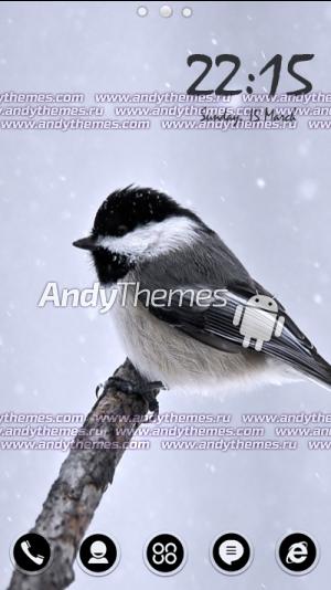 Titmouse Bird by Naz